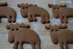 Gingerbread elk/moose/reindeer