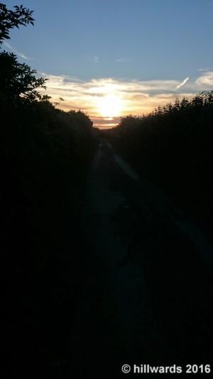 SunsetLanes